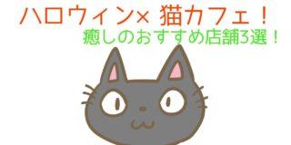 ハロウィン×猫カフェ!新宿、秋葉原などおすすめ!のサムネイル